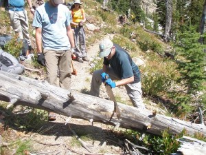 Sawing trees off the trail