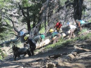 Mt. Borah Project 2013