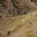 Trail crews working the the trail